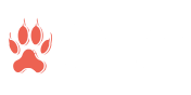 Creation Critters
