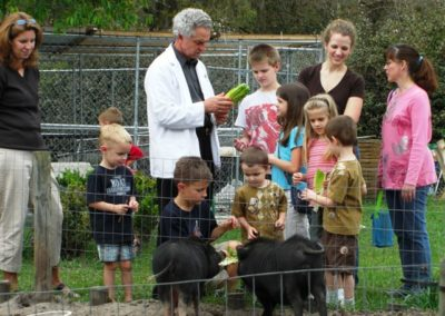 Feeding the Pot Belly Pigs | Homeschool group | Creation Critters | Lakeland