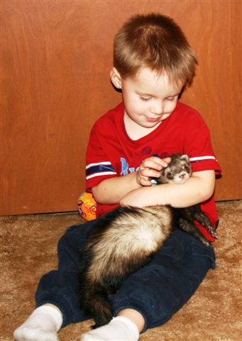 Jacob holding RickyWooLay - Arctic Fox | Mammals | Creation Critters | Lakeland