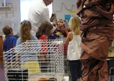 This is Bandit the Ferrett | Northside Christian Pre-school | Creation Critters | Lakeland